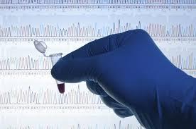 2015:  ¿Sera el año de la terapia génica para el tratamiento de niños con Síndrome deSanfilippo?